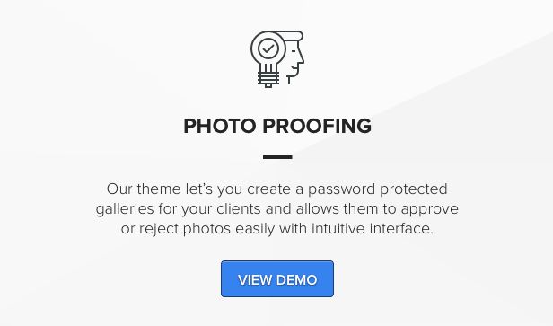 Theme for photographers with photo proofing